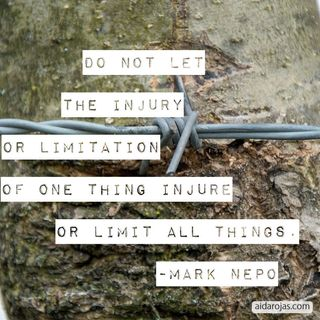 Not Let The Injury Or Limitation Of One Thing Injure or Limit All Things