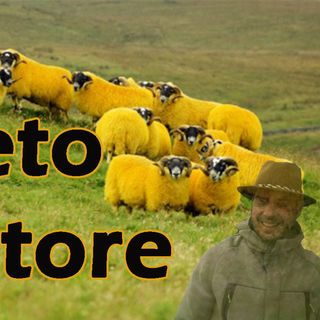 Il segreto del Pastore
