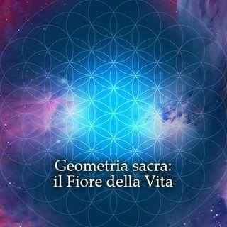 Buongiorno 😃☀️💖oggi leggiamo la Guida al Nuovo Paradigma 💙