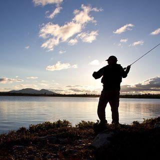 Hvordan blir fisken fisket?