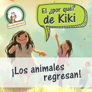 El por qué de Kiki, capítulo seis: ¡Los animales regresan!