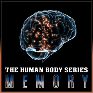 Memory (The Human Body Series)