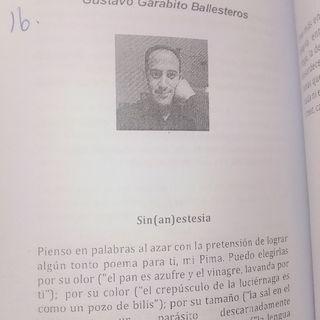 Gustavo Garabito Ballesteros.m4a