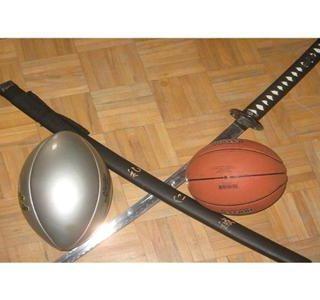 The Sports Beatdown/segmemt 2/ Demise of TO pro sports