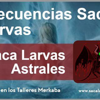 saca larvas 2