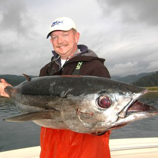 NWWC 8-5 Del Stephens' view on tuna + Joe Q. jigging up kings in South Sound