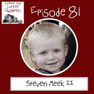 Episode 81 - Steven Meek II