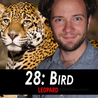 28 - Bird the Leopard