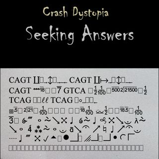 Crash Dystopia Seeking Answers