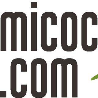 Financiamiento Colectivo con micochinito.com