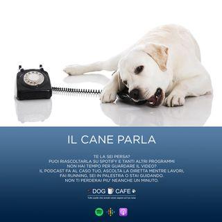 #014 - Il cane parla - Cosa è l'esperanto evolutivo?