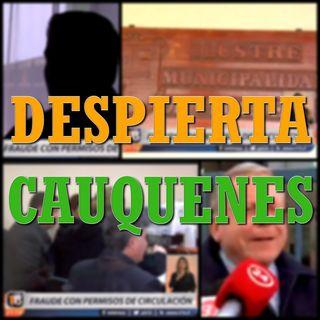 #DespiertaCauquenes: Los permisos de circulación falsos los pagan los más pobres