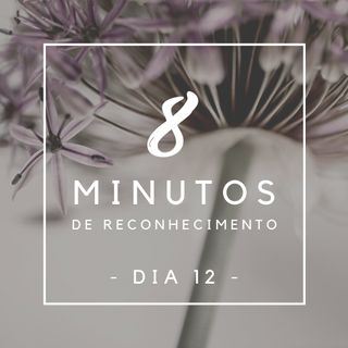 8 Minutos de Reconhecimento - Dia 12