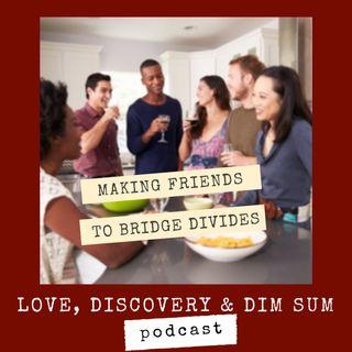 Making Friends to Bridge Divides