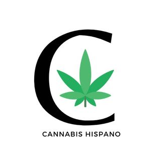 Consultas virtuales para prescribir cannabis toman auge en Estados Unidos.-Epi 16