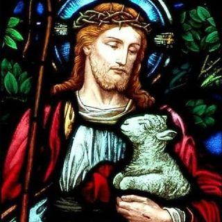 BIBLIA Y CATECISMO (Domingo IV de Pascua)