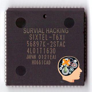 SPECIALE12- Survival Hacking - Il mio secondo lavoro