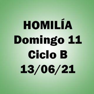 Homilía. Domingo 11 durante el año. 13 junio 2021. Ciclo B. P. A.