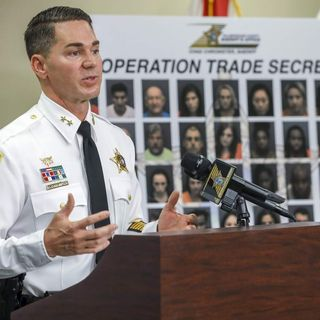 "Hillsborough Sheriff's Office ""Operation Trade Secrets"" = 80 Arrests and One Human Trafficking Charge +"