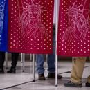 Why Nonvoters Choose to Opt Out