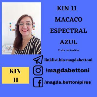 KIN 11  MACACO ESPECTRAL AZUL - 1ª Onda Encantada do Tzolkin –  ONDA ENCANTADA DO DRAGÃO