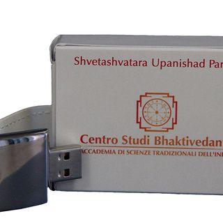 Shvetashvatara Upanishad (parte 2)