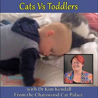 Cats Vs Toddlers - Dr Kim Kendall