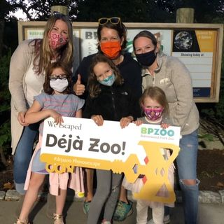 It's Deja Zoo all over again at a popular zoo in New Bedford