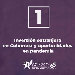 1. Inversión extranjera en Colombia y oportunidades en pandemia