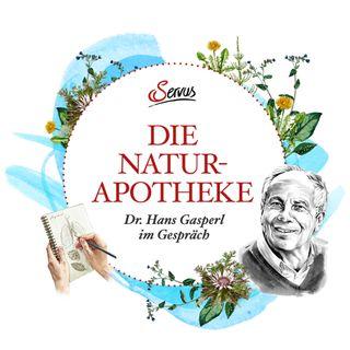 Die Naturapotheke – Dr. Hans Gasperl im Gespräch