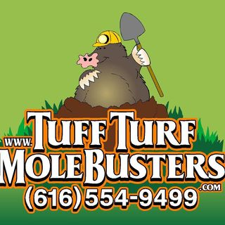 TOT - Tuff Turf Molebusters (6/3/18)