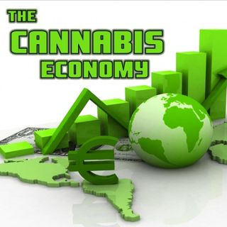 Time 4 Hemp - Meet Jeffrey Goldberg