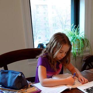 Complicaciones del home office y las escuelas virtuales durante el confinamiento