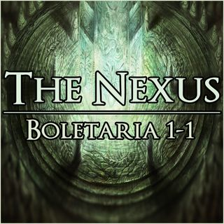 The Nexus 003 - Boletaria 1-1