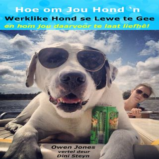 Hoe om Jou Hond 'n Werklike Hond se Lewe te Gee