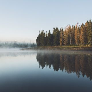 Sonidos relajantes. Sonidos de la naturaleza alrededor del lago