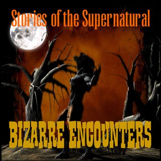 Bizarre Encounters | Interview with Lon Strickler | Podcast