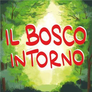 Il Bosco Intorno - Scuola e Natura
