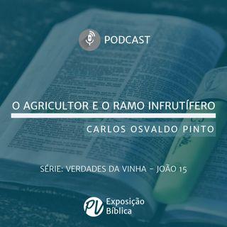 Verdades da Vinha - O Agricultor e o Ramo Infrutifero - Carlos Osvaldo Pinto