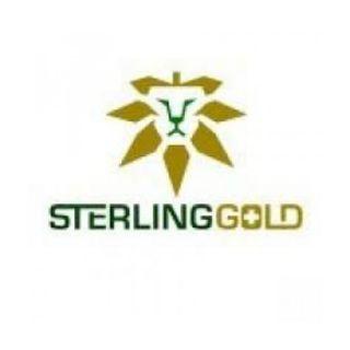 Sterling Gold (Dab Sesh)