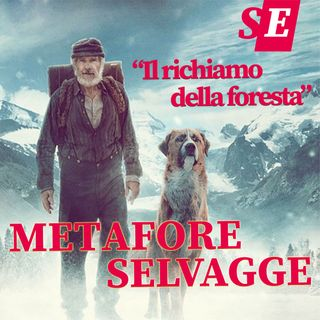 Metafore selvagge da utilizzare (per forza!)
