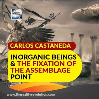 Carlos Castaneda Inorganic Beings And The Fixation Of The Assemblage Point