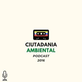 Permisos de Aprovechamiento Forestal en Colombia - Importancia y consecuencias frente a los individuos arbóreos y los ecosistemas