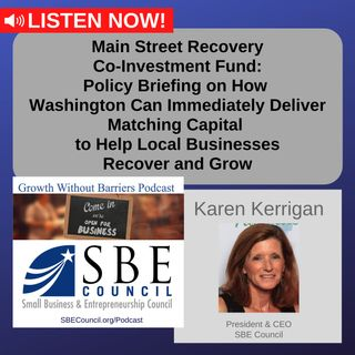 Policy Briefing: Main Street Recovery Co-Investment Fund