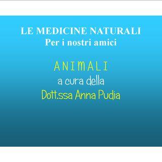 LE MEDICINE NATURALI PER I NOSTRI AMICI ANIMALI