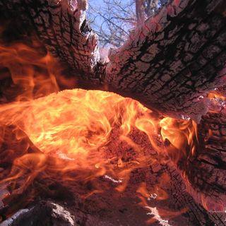 Tutto Qui - mercoledì 27 marzo - La nuova triste situazione degli incendi in Piemonte