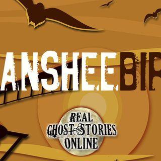Banshee Birds | RGSO Classic Epsidoe