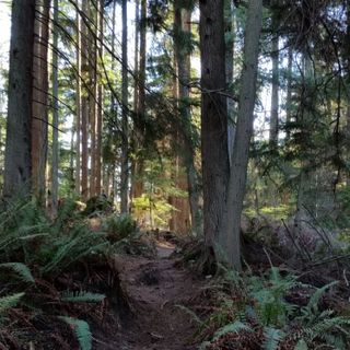 60 Seconds for Wednesdays on Whidbey: Time as Ally and Walking as Worship