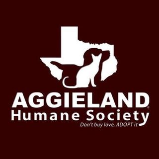 Aggieland Humane Society's Leiha White on The Infomaniacs