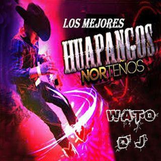 Huapangos Norteños (mix)